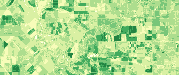 How to make online products on satellite images: Compute NDVI for any date