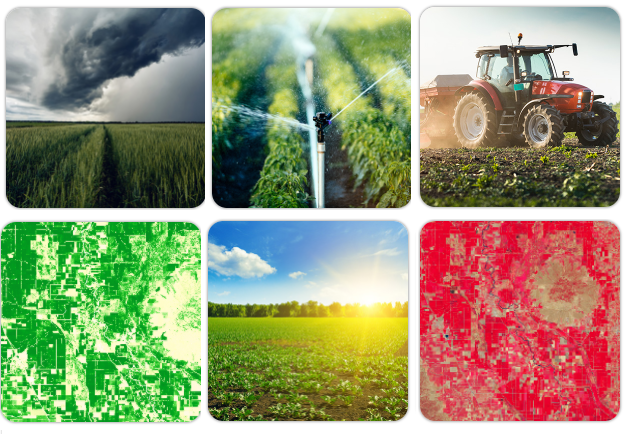 Helping farmers manage their enterprises: weather and satellite APIs for agroservices